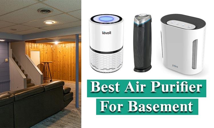 best air purifier for basement