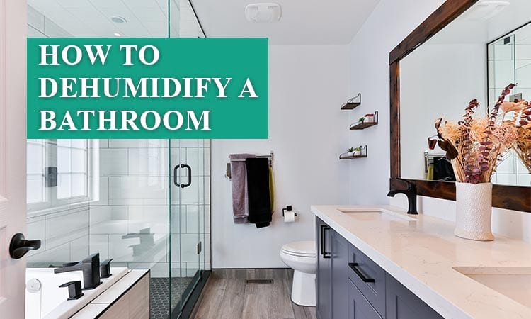 how to dehumidify a bathroom